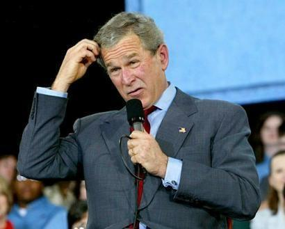 Bush_stupid